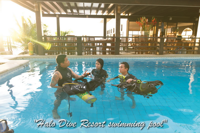 Anilao Diving Resort - Halo Dive Resort